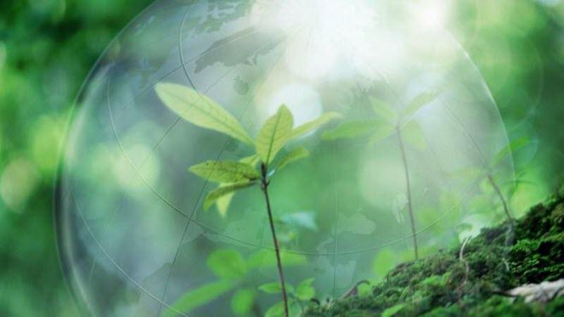 Збереження природи