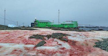 Українська антарктична станція забарвилася в кривавий колір