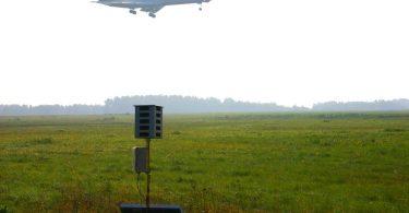 Створена гуманна система відлякування птахів від аеропортів