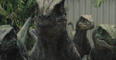 Як насправді полювали хижі динозаври