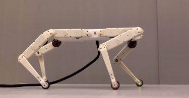 У робопса Boston Dynamics з'явився більш бюджетний конкурент