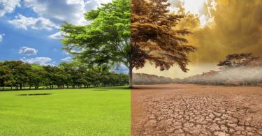 Названа головна причина глобального потепління