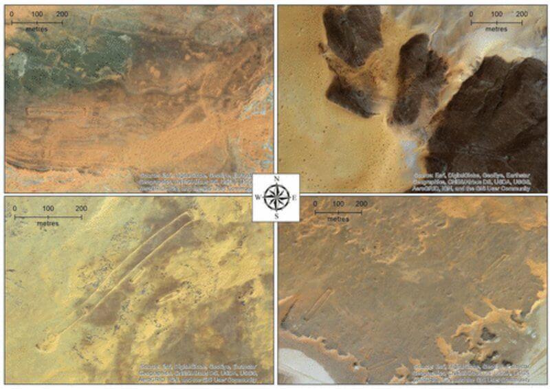 Знімки мустатилів з супутника