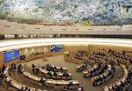 Рада ООН