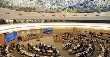 Україна знову увійшла до Ради ООН із прав людини