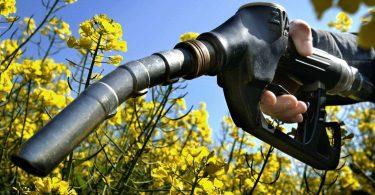 """""""Спиртовий"""" бензин – гідна альтернатива або обман: результати досліджень"""