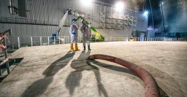 Вчені пояснили нові ядерні реакції на ЧАЕС