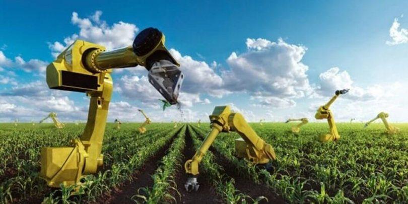 Роботизована ферма