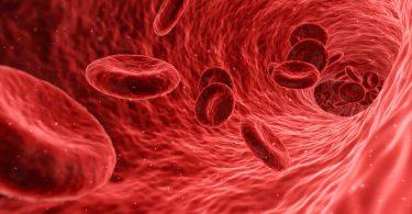 Розроблено універсальний синтетичний замінник крові